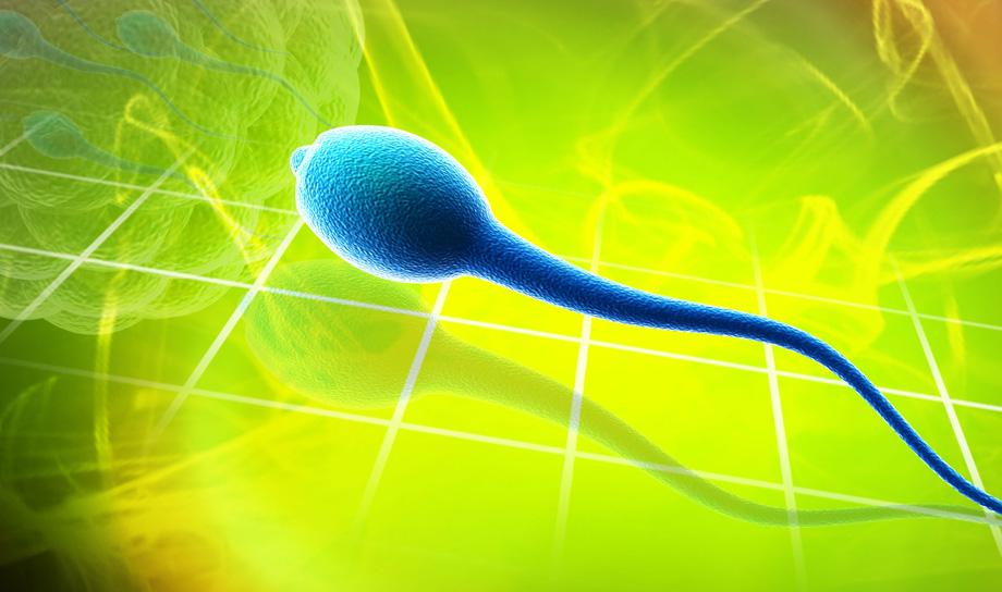 Учёные интегративных нанонаук показали видео спермаботов, помогающих победить мужское бесплодие