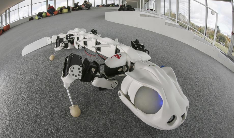Созданный при помощи 3D-принтера робот-саламандра